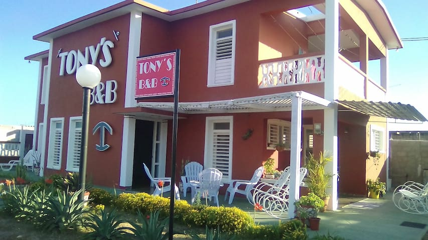TONY'S B&B.       Your home away from home