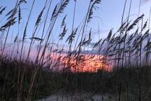 Sunset Sanctuary