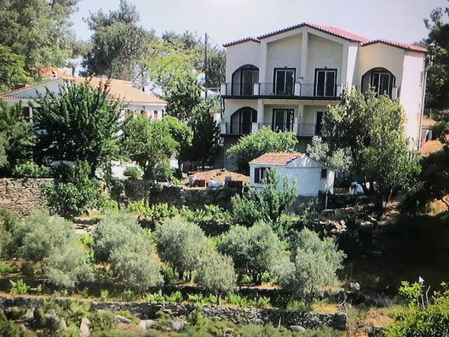 Despina Apartments Kastanies Raxes Ikaria