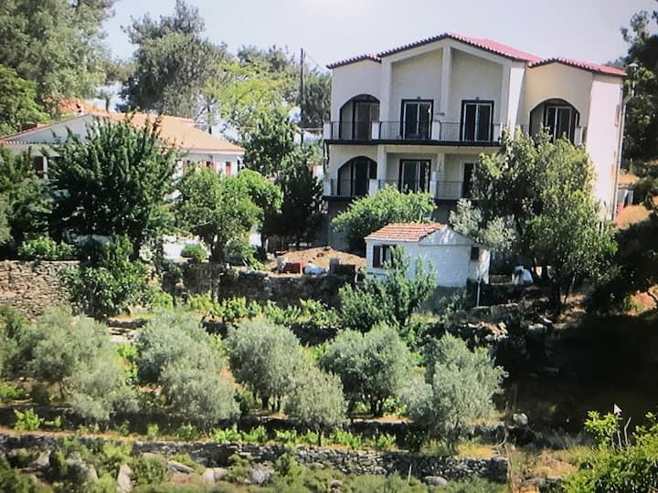 Despina Apartments Kastanies Raxes Ikaria