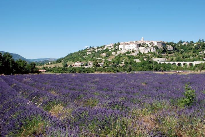 Petite Maison de Village en Provence - Sault - Hus