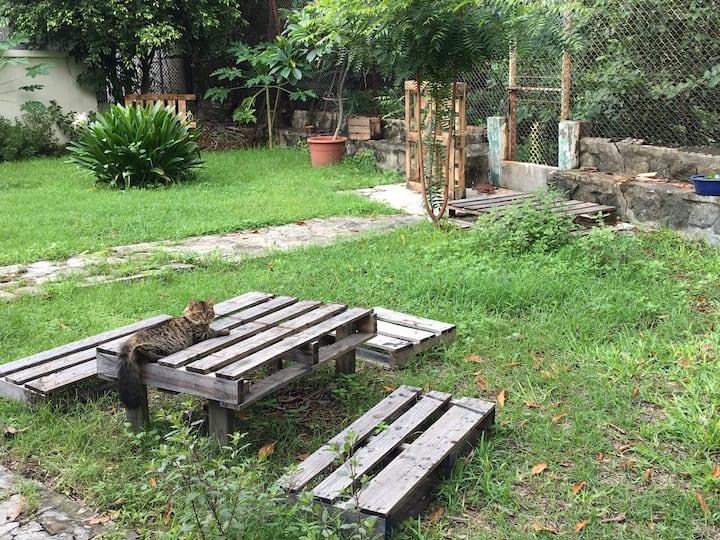 Casa con tienda,  yoga, jardin y estero.