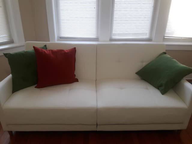 (72W-W) A Smart Sleeper Sofa in Douglass Flat