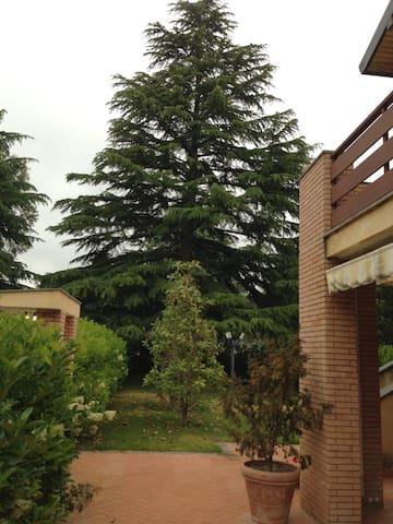 Villa moderna, comoda, elegante e confortevole. - Nicolosi - Villa
