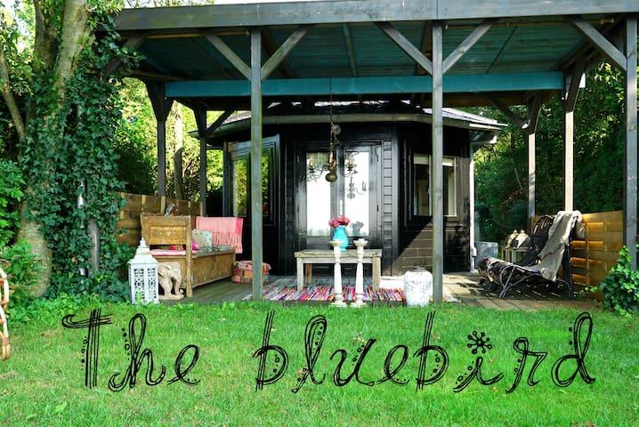 """Sfeervol vakantiehuis """"The Bluebird"""" - IJsselmuiden"""