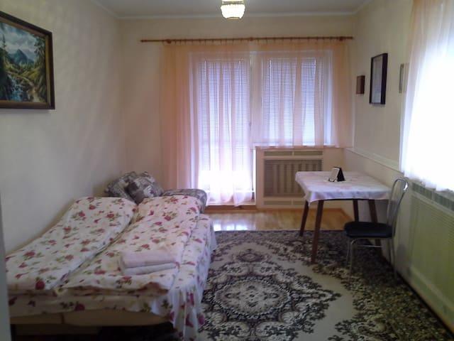 Комната в  Гостевом Доме в Святопетровском