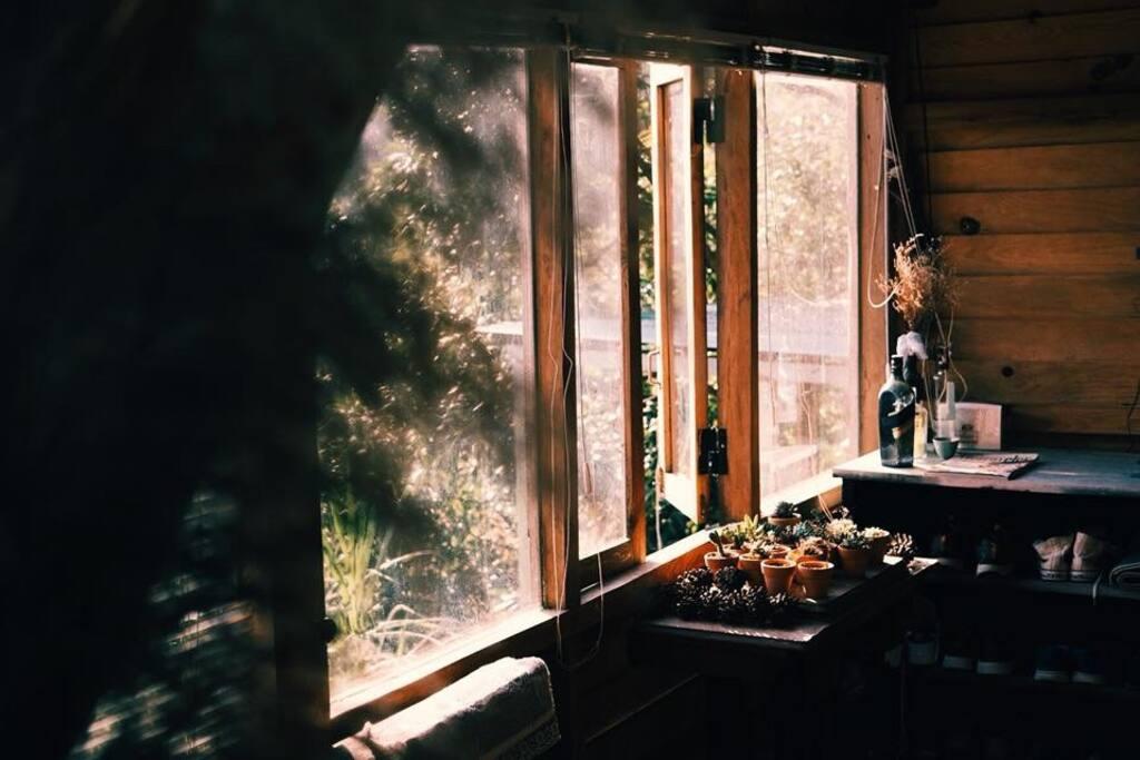 The sun is shining through triple bed room's windows