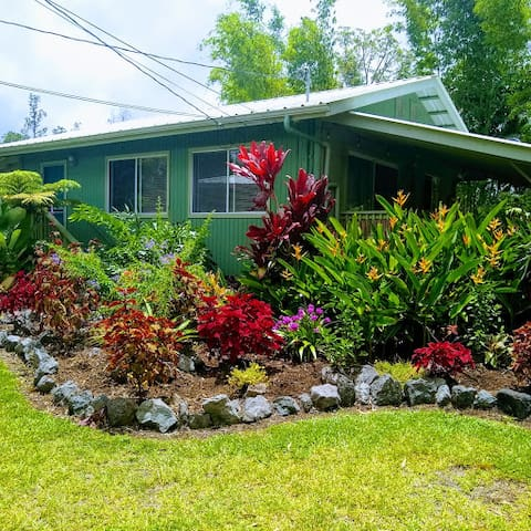 Private House Tropical Gardens Outstanding Value $