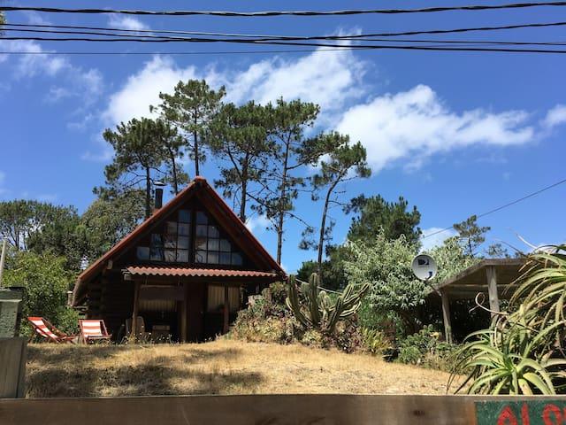 Cómoda y disfrutable cabaña en entorno natural