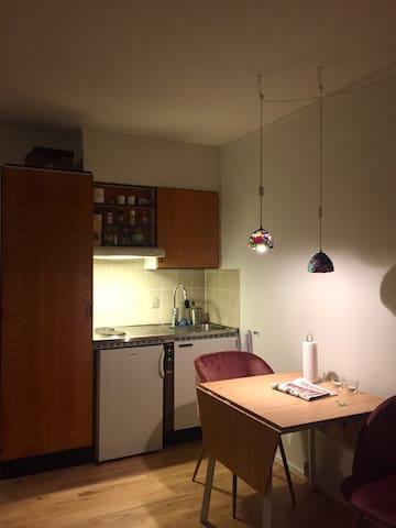 Studio apartment Roskilde