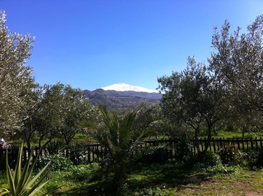 """Vista: """"Etna da Casa Cuntarati"""""""