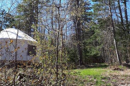 Hand-Crafted Woodland Yurt