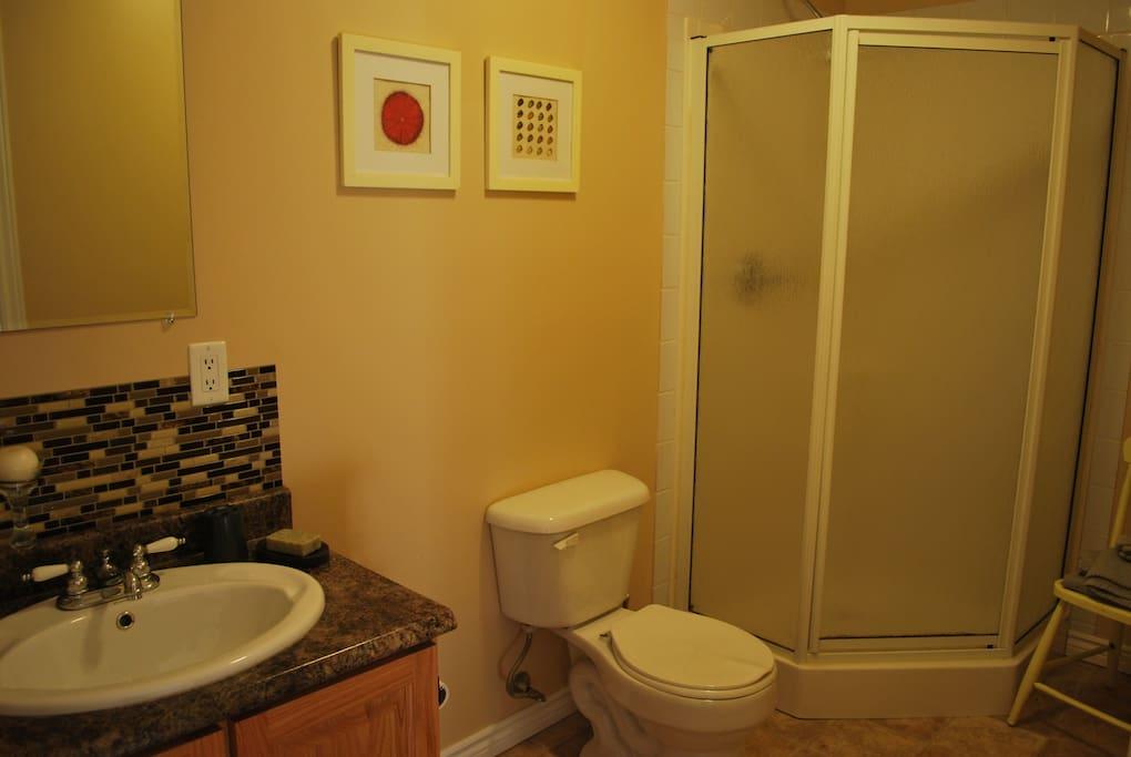 Ensuite bathroom for bedroom #1