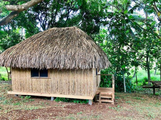 Palmlea Farm and Eco Lodge Clamping Bure 6