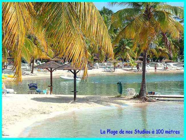 """Guadeloupe  Appartement A """"Gosier"""" Grande-Terre."""