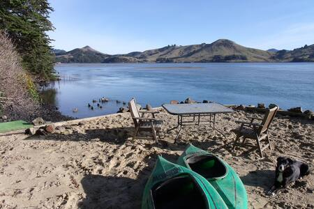 Private Peninsula beach, wildlife, tranquility - Cape Saunders