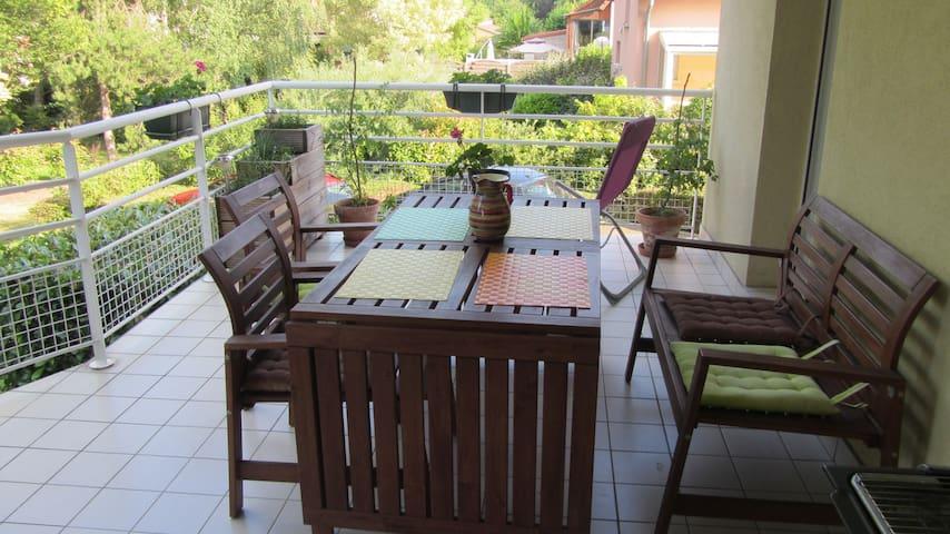grand appartement 2 pièces avec terrasse - Bischoffsheim - Byt