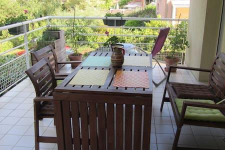 grand appartement 2 pièces avec terrasse - Bischoffsheim