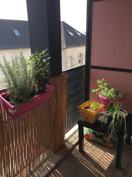 """Espace """"herbes aromatiques"""" sur la terrasse"""