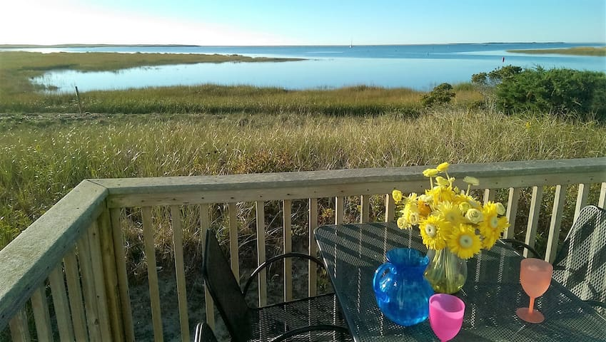 On the Golden Seashore of Chatham, Cape Cod - Chatham - Apartament