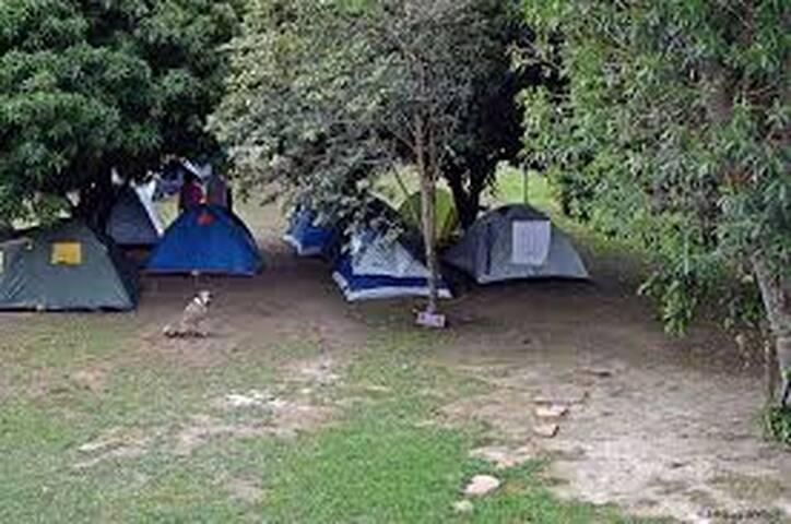 Camping da tartaruga 3