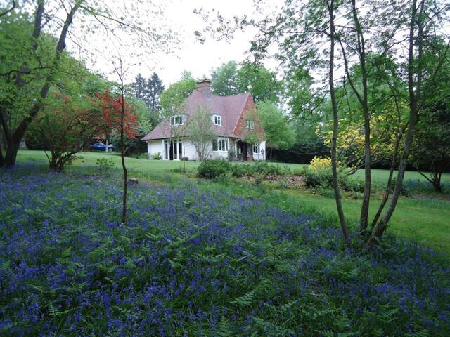 Country Home on Ashdown Forest - East Sussex - Casa
