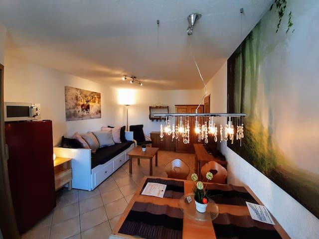 2 Raum Appartement (40 m2), Hallenabad + Sauna