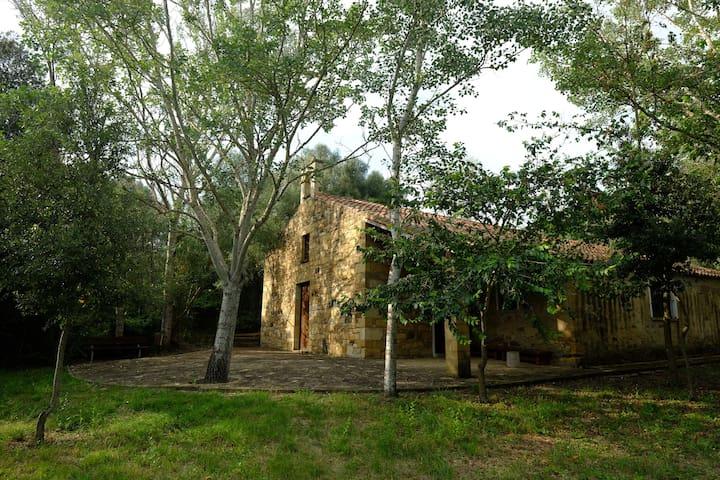 Chiesa di Santa Maria Angiargia, Collinas