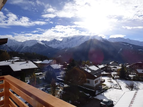 Mont Blanc view + baby equipment