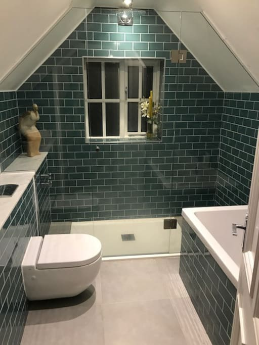 Large walk in shower and full size bath