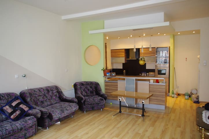BEAUTIFUL, spacious apartment for 5-6 people - Brzeg - Huoneisto