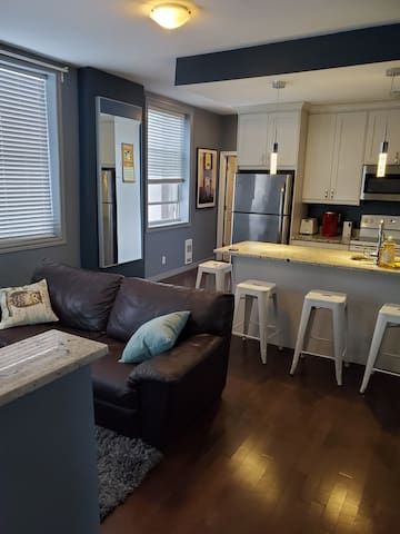 1-bedroom Apartment/Heart of Downtown Ottawa (S 5)