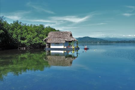 Floating Lodge La Casa Nenufar