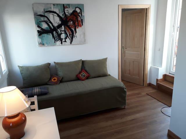 Salon cocina con sofá transformable en dos camas individuales
