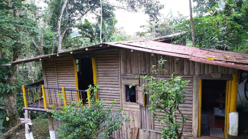 Eco cabaña en Bosque de Bremen - Filandia