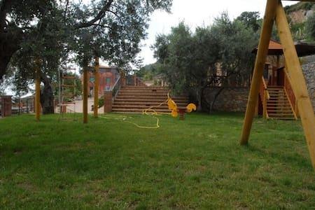 STELLA - Cetraro