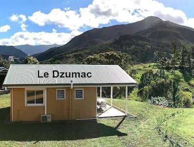 """Gite Le Panoramique - Chalet """"Le Dzumac"""""""