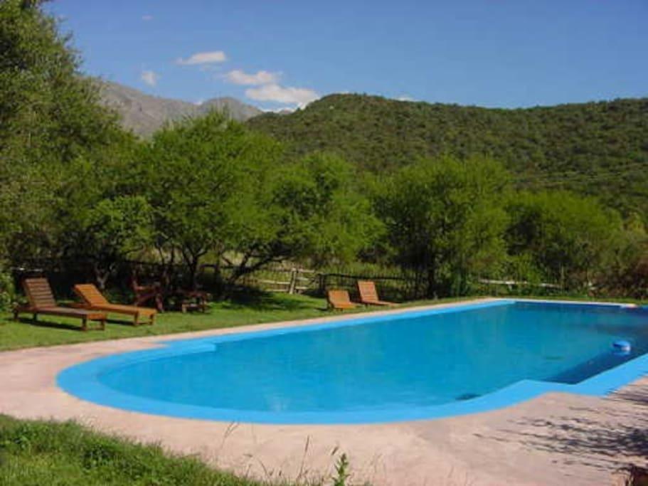 la piscina en verano