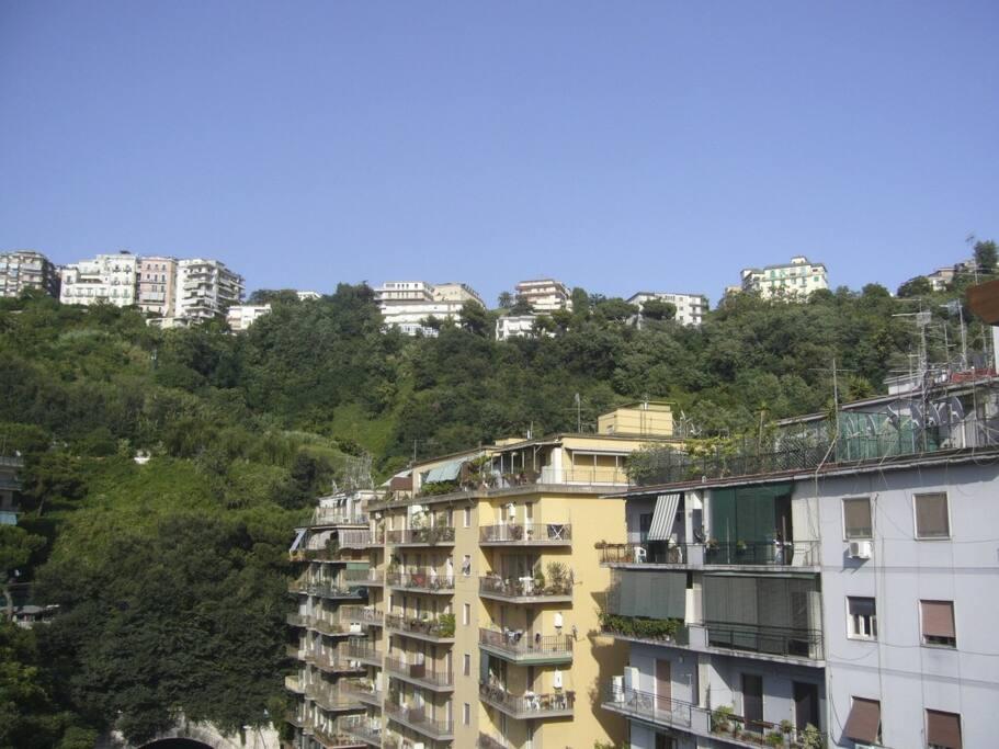 Vista colina dal balcone dell'appartamento !!!