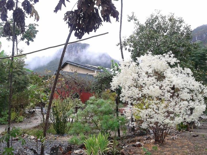 Sítio Acauã: a natureza é seu anfitrião especial