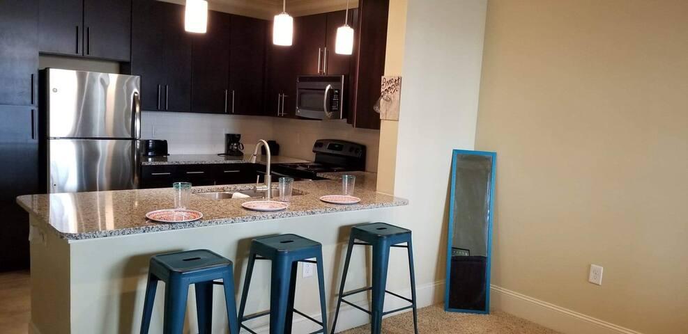 New deluxe apartment near midtown/suntrust stadium