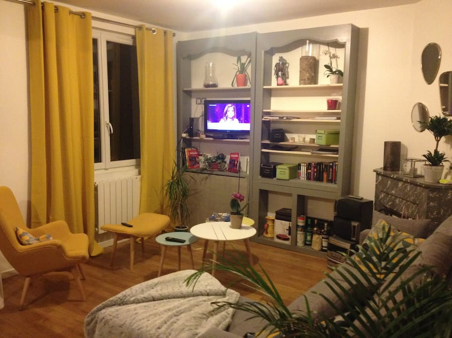 le salon de l'appartement