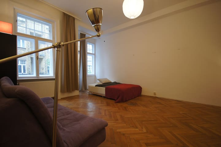 Large room near Stadtpark and Ringstrasse - Wien - Apartment