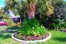 Flowers change with seasons:  Front yard is beautiful