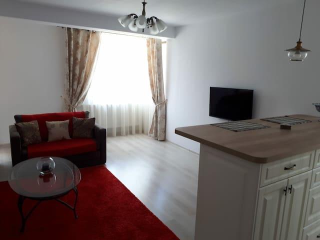 Cozy flat in Iasi