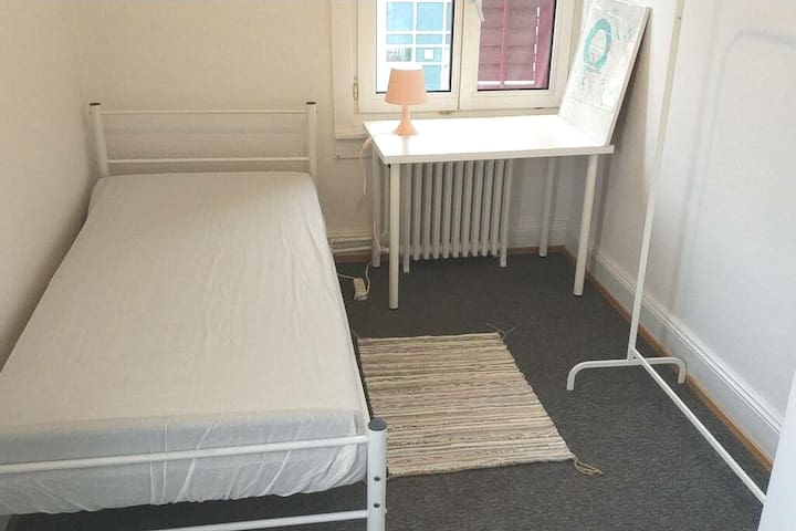 Single room in house with garden, Zürich City