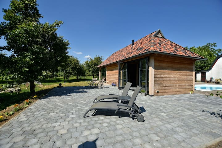 Spacious Holiday Home in Herveld with Pool