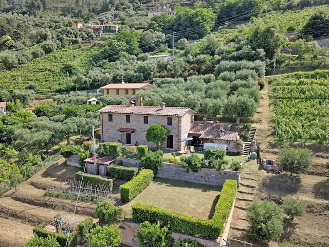 Stone house with Sea View for 5 People above Forte dei Marmi, A/C, WiFi