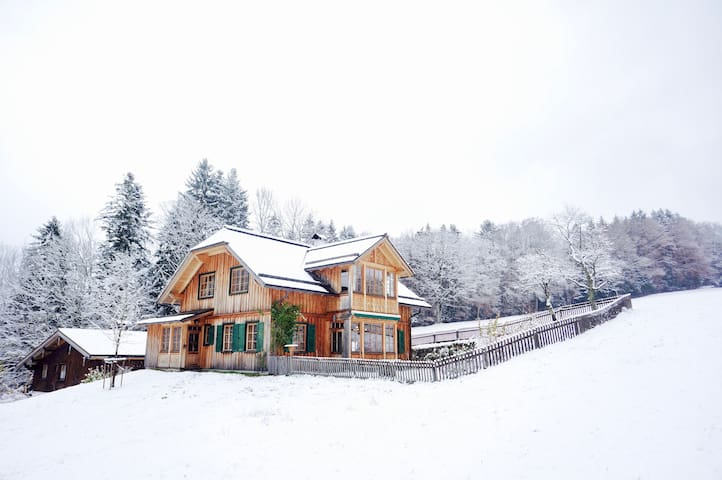 ALTAUSSEE LODGE - big, bright, new - pure living ! - Altaussee