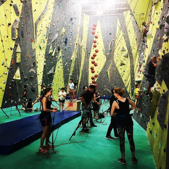 Sydney Indoor Climbing Gym St Peters adlı yerin fotoğrafı